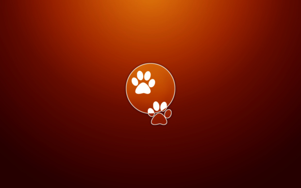 Ubuntu 11.10 Oneiric Ocelot Wallpapers