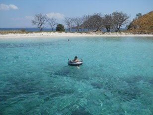 Ultime plongeon dans la mer de Flores