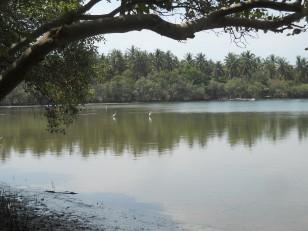 Gili Meno : Le lac salé