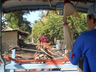 Gili Air : Petit tour en cidomo pour nous ramener à l'embarcadère