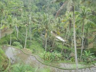 Tampaksiring : Le Gunung Kawi