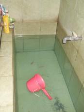 Une baignoire avec ses quelques poissons rouges