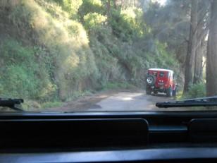 Le Mont Bromo : En route pour la caldera