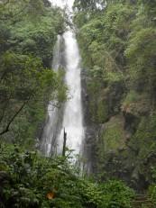Après 2h de marche, nous arrivons à la cascade Laagan, la plus haute de Bali
