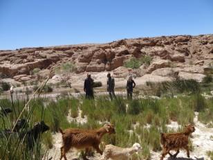 Ouarzazate : Et après les décors de cinéma, pause autour de la kasbah de Tifoultoute