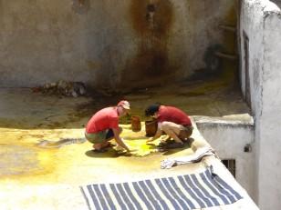 Fès: Les tanneries Chouara au cœur de la médina