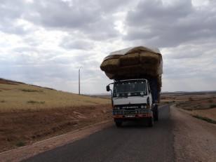 Sur la route d'El Kelaa des Sraghna