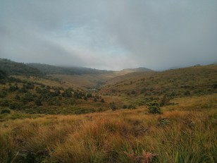 Horton Plains : Direction le mini World's End