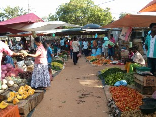 Tissa : Le marché