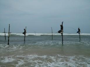 Ahangama : Des pêcheurs traditionnels