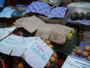 Pondichéry : Avec ses odeurs, ses mouches et ses corbeaux... Dépaysement garanti !