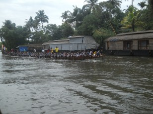 Allepey : Un snakeboat race avec une quatre-vingtaine de rameurs