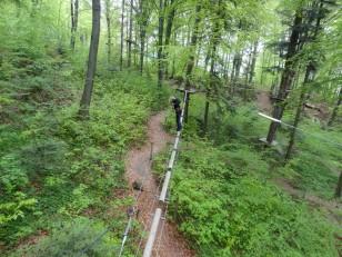 Brașov : Les parcours sont multiples…