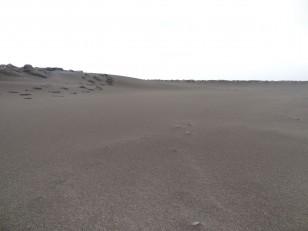 Le Sud de l'Islande : La plage du port d'Herjólfur
