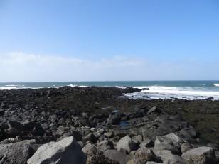 Reykjavik : La plage de Grótta