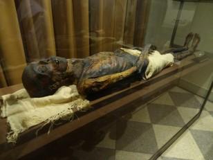 Saint-Pétersbourg: Le musée de l'Ermitage