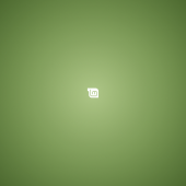 Linux mint pale green lomo 2560x1440